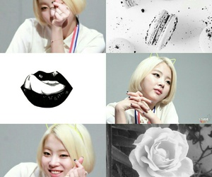code, zuny, and ladies'code image