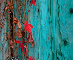 autumn, blue, and colors image