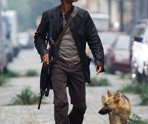 will smith, dog, and i am legend image