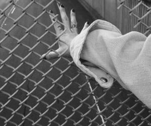 alternative, escape, and fence image