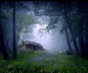 cottage, fairytale, and forest home image