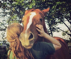 best friend, forever, and horse image