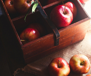 apple, autumn, and food image
