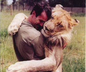 lion, man, and friendship image