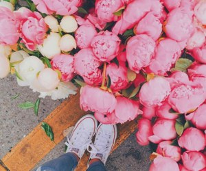 flowers, pink, and converse image