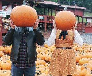 pumpkin, couple, and autumn image