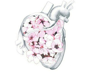 heart, draw, and flowers image