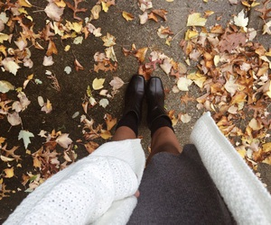 autumn, cold, and cool image