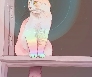cat, wallpaper, and rainbow image