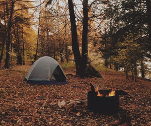 autumn, fall, and camping image