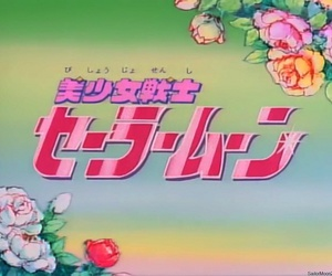 sailor moon, opening, and rose image
