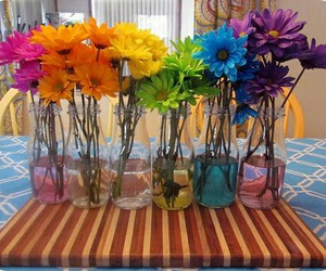 colors, flowers, and rainbow image