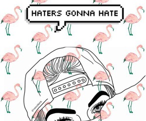 haters, locks, and screens image