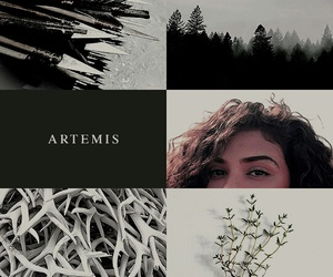 artemis and greek mythology image
