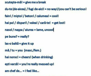 bilingual, learning, and phrases image