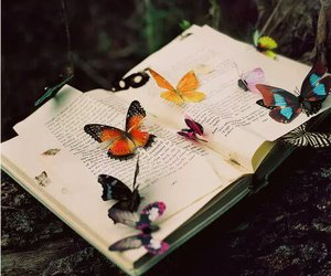 books, butterfly, and photography image