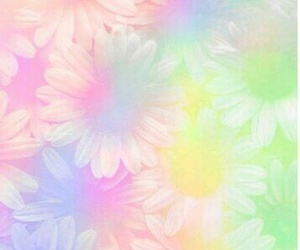 flowers, wallpaper, and rainbow image
