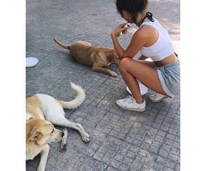 animals, dog, and girl image