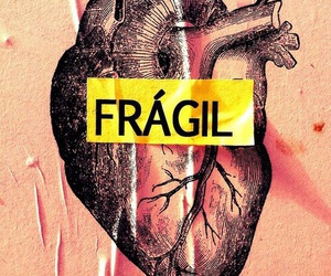 heart and fragil image