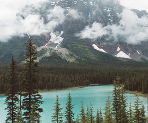 mountain, nature, and forest image