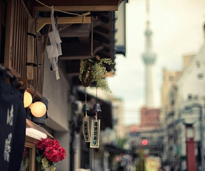 japan, city, and flowers image