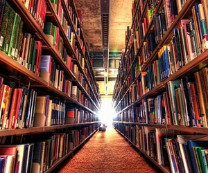 amazing, book store, and books image
