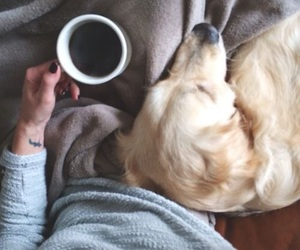dog, girl, and coffee image