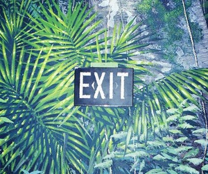 exit, background, and green image