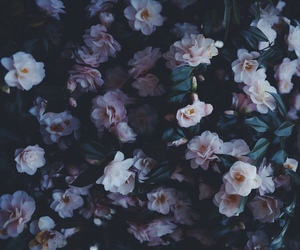 flowers, alternative, and tumblr image