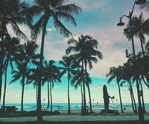 ocean, palm tree, and summer image
