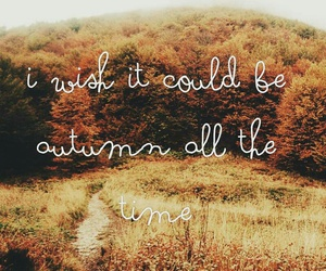 autumn, words, and forest image
