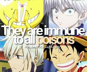 anime, hunter x hunter, and one piece image