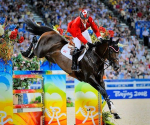 equestrian, legend, and horse image