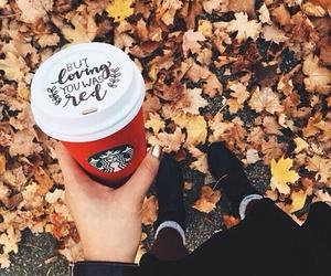 autumn, fall, and starbucks image