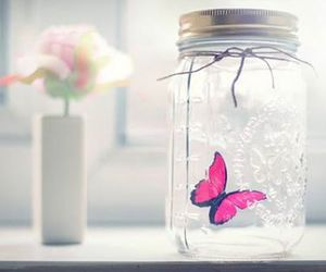 butterfly, jar, and pink image