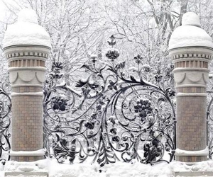 winter, snow, and gate image