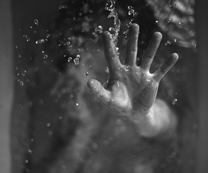 b&w, photography, and underwater image