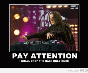 snape, harry potter, and funny image