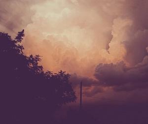 beauty, nature, and usa image