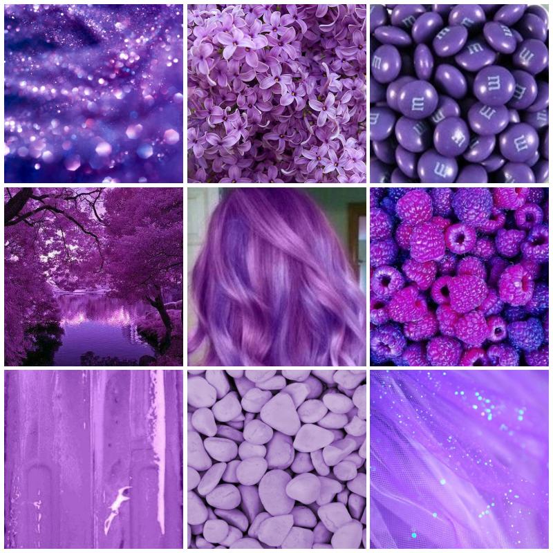 Все крупноцветковые хризантемы фото так как