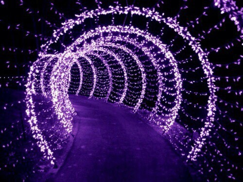purple, light, and aesthetic image
