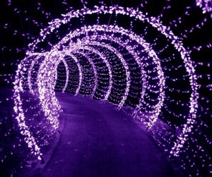 purple, light, and violet image