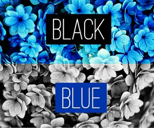 black, blue, and colours image