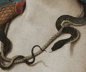 15th century, detail, and snake image