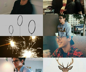 aesthetic, harry potter, and james potter image