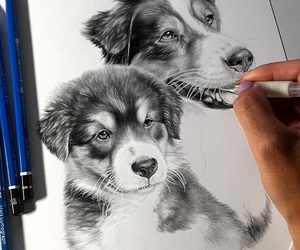 animals, paint, and pets image
