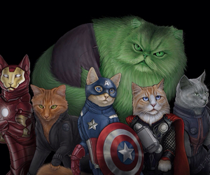cat, Avengers, and Hulk image