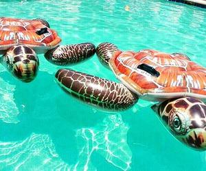 fun, pool, and summer image