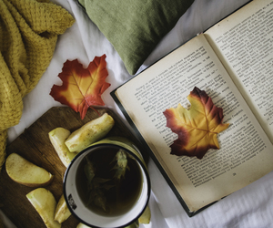 apples, blanket, and books image