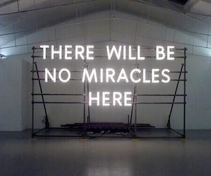 miracles and neon image